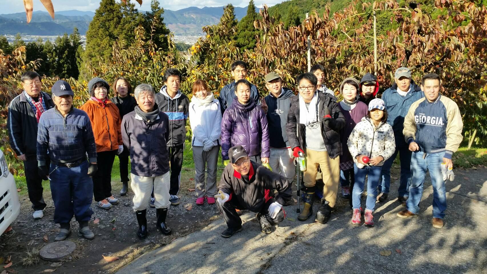 2017年 11.23 柿収穫ボランティア