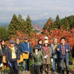 令和2年11月23日柿ボランティア 杷木